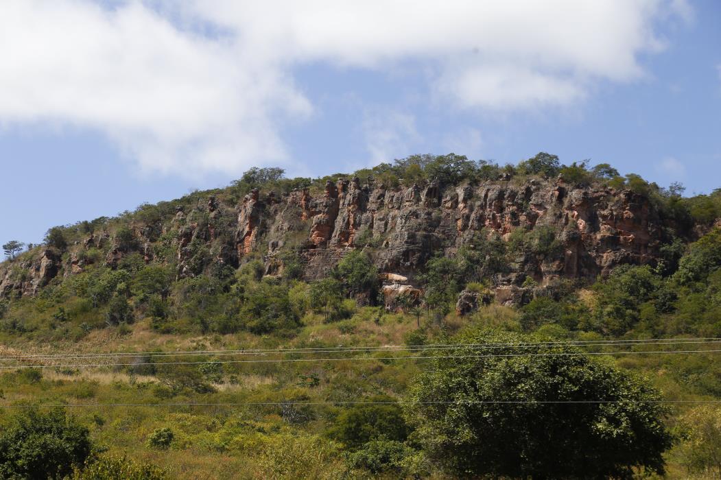 A Bacia do Araripe, no Cariri, é uma jazida riquíssima em fósseis de vários períodos geológicos.