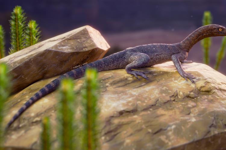 Ilustração da possível aparência do Elessaurus, que viveu há 252 milhões de anos na Terra(Foto: Divulgação/Márcio L. Castro)