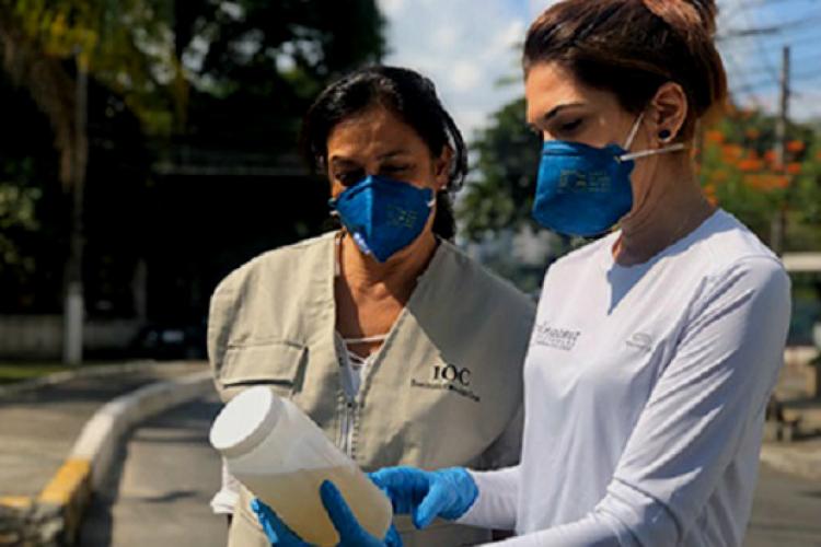 A Fundação Oswaldo Cruz conta com 50 laboratórios de referência e departamentos articulados em redes internacionais para a solução de problemas de saúde pública (Foto: Divulgação/Fiocruz)