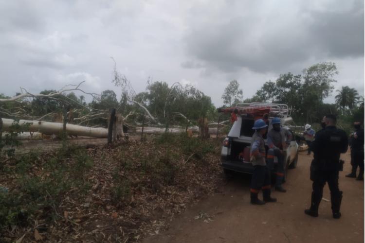 Fiscais da Prefeitura e guardas municipais acompanharam a ocorrência. Situação aconteceu em zona rural do município de Paracuru. (Foto: Divulgação/Ascom/Prefeitura de Paracuru)