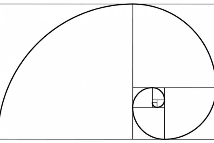 O desenho da Espiral de Fibonacci é uma repetição contínua de si mesmo em versões que vão diminuindo de tamanho gradativamente