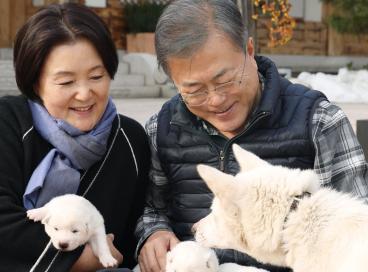 Presidente sul-coreano Moon Jae-In e sua esposa, Kim Jong-sook, posam para fotos com cachorros recebidos pelo casal como presente da Coreia do Norte