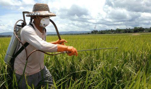 51 agrotóxicos foram liberados nesta segunda-feira, 22, no ano as liberações totalizam 262 produtos.