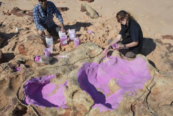 Cientistas identificam pegas de dinossauros na Austrália