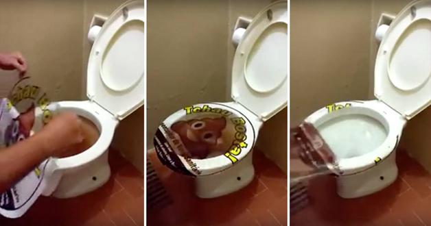 Armario Keter ~ Adesivo desintupidor de vaso sanitário viraliza em redes sociais O POVO Online