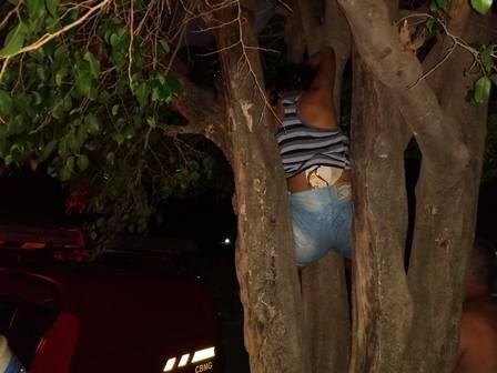mulher presa em árvore