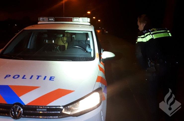 Cachorro da raça boxer dentro da viatura policial. (Foto: )